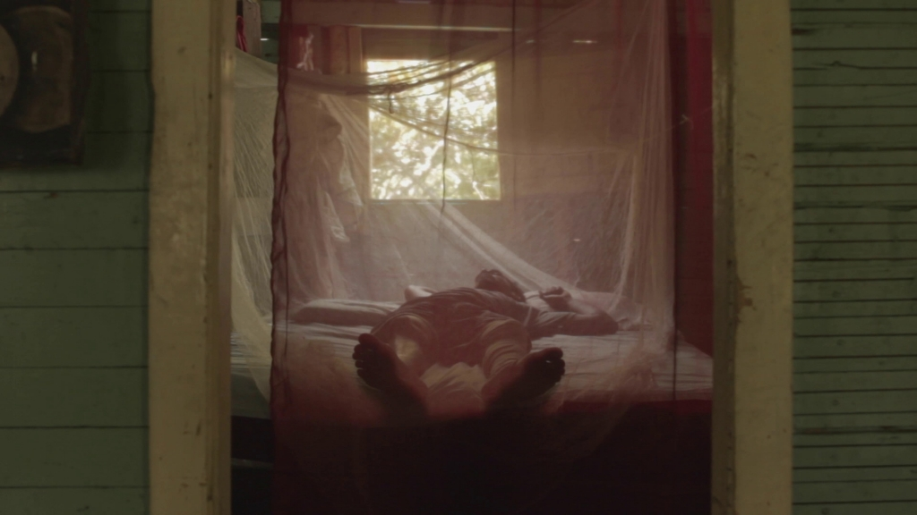 Image of man lying on bed under mosquito net